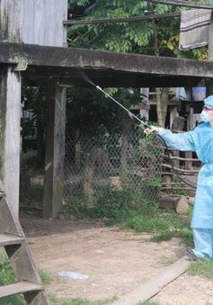 Đăk Lăk: Hơn 70 trường hợp mắc bệnh sốt rét