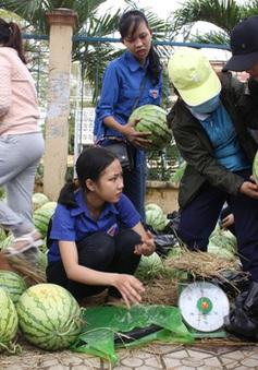 """""""Giải cứu"""" nông sản: Cần giải pháp căn cơ"""