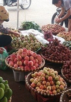 Khó quản lý chất lượng trái cây bằng việc xóa bỏ hàng rong