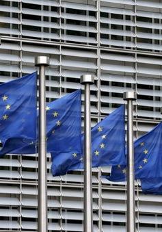 Kinh tế khu vực Eurozone tăng trưởng nhanh nhất trong 10 năm