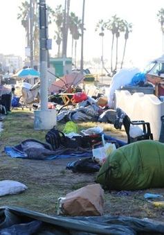 Những nghịch lý về thực trạng vô gia cư trên thế giới