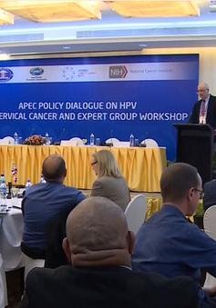 Đối thoại chính sách tại APEC về HPV và ung thư cổ tử cung