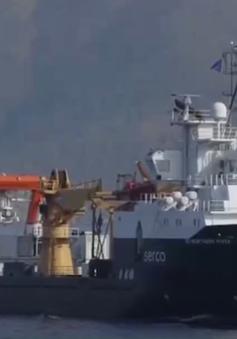 Thổ Nhĩ Kỳ diễn tập hải quân với NATO