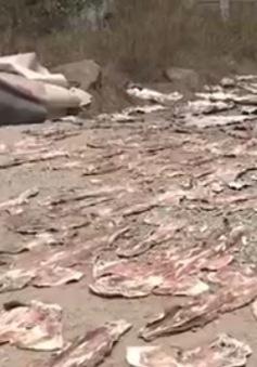 Nha Trang: Hải sản khô được phơi… ngay gần bãi rác