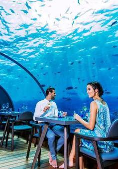 Khám phá nhà hàng dưới nước lớn nhất thế giới