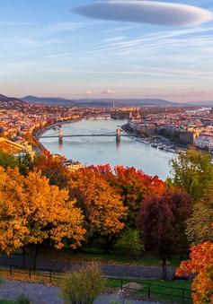 Lạc bước trong khung cảnh mộng mơ rực sắc thu ở Budapest