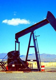 OPEC sẽ cắt giảm sản lượng dầu mỏ trong nửa đầu năm 2018