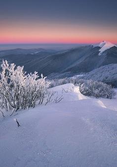 Ngắm mùa đông huyền ảo ở vùng rừng núi Ba Lan