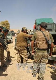 Iraq mở chiến dịch tấn công IS gần biên giới Syria