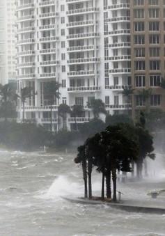 Những trò lừa đảo ăn theo các trận siêu bão gây phẫn nộ