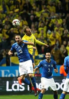 Kết quả bóng đá sáng 11/11: Thua Thụy Điển, Italia có nguy cơ ngồi nhà xem World Cup