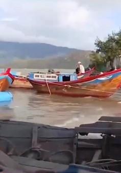 Phương án khoanh nợ cho ngư dân vùng bão