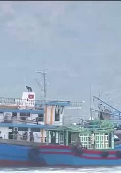 Khánh Hòa: Cấm biển, cho học sinh nghỉ học và sơ tán hơn 22.000 người dân