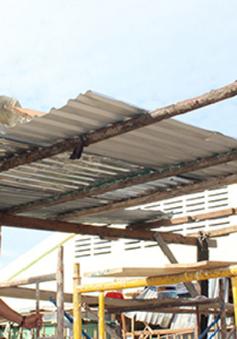 Hỗ trợ, xây dựng nhà cho người dân vùng bão trước Tết Nguyên đán 2018