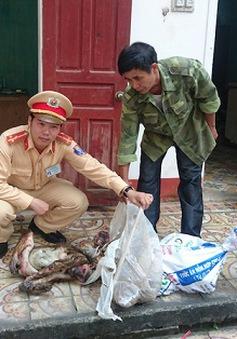 Nghệ An: Phát hiện vụ vận chuyển 4 cá thể khỉ trái phép