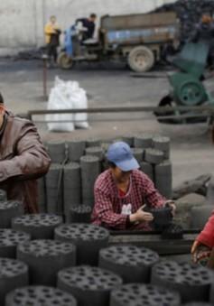Người dân Trung Quốc đối mặt với tình trạng thiếu khí đốt