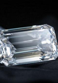 Christie's sẽ bán đấu giá viên kim cương hoàn mỹ nhất thế giới