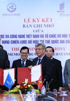 WIPO và Bộ KH&CN hợp tác xây dựng Chiến lược sở hữu trí tuệ quốc gia