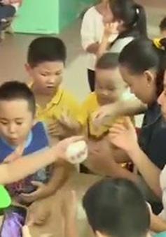 TP.HCM: Nhiều trường công lập dạy kỹ năng sống cho học sinh trong dịp hè