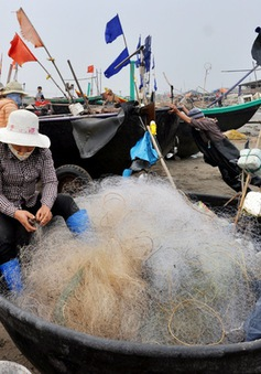 Ra quân làm sạch môi trường biển 2017