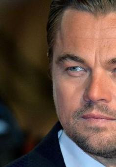 Sau giải Oscar, Leonardo DiCaprio đã tìm được vai diễn mới