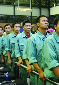 Đảm bảo an toàn lao động Việt Nam tại Hàn Quốc và Nhật Bản