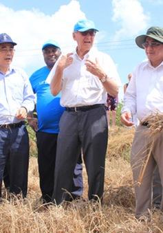 Liên Hợp Quốc hỗ trợ Việt Nam đảm bảo sinh kế bền vững