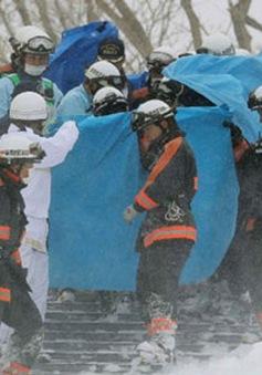 Lở tuyết tại Nhật Bản, 8 người thiệt mạng