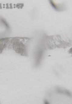 Nhật Bản điều tra vụ lở tuyết