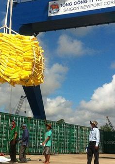 ĐBSCL: Xuất khẩu giảm sức cạnh tranh vì logistics kém phát triển