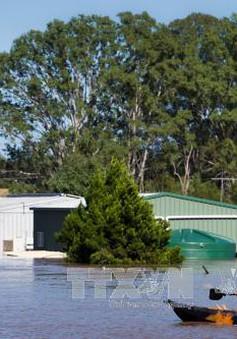 Lũ lụt diễn biến phức tạp ở Australia