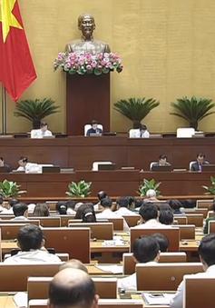 Quốc hội thảo luận Luật quản lý tài sản Nhà nước sửa đổi