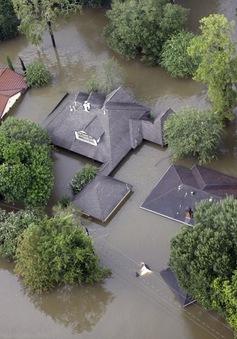 Bang Texas (Mỹ) đối mặt nhiều khủng hoảng sau bão lũ
