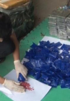 Lạng Sơn: Bắt giữ 59 bánh heroin, 36.000 viên ma túy tổng hợp