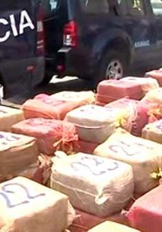 Argentina thu giữ 2 tấn cocaine