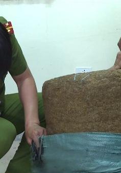 Nghệ An: Triệt phá đường dây mua bán ma túy số lượng lớn