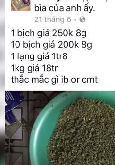 Việt Nam xuất hiện nhiều loại ma túy mới