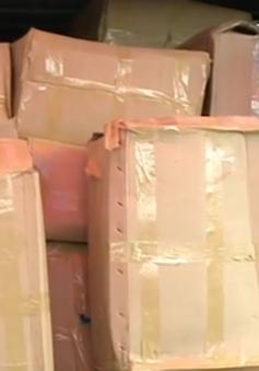 Bắt giữ 2.800kg ma túy thảo mộc