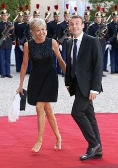 Phu nhân Tổng thống Pháp sẵn sàng làm việc không lương