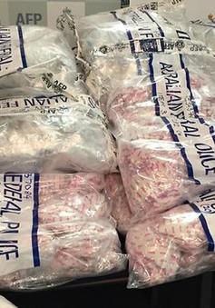 Thái Lan thu giữ lượng lớn ma túy đá