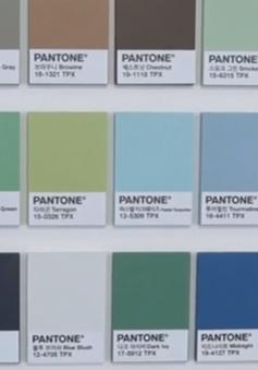 Sức mạnh của màu sắc trong lĩnh vực marketing tại Hàn Quốc