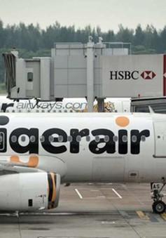 Có mùi cháy ở khoang, máy bay chở 163 hành khách hạ cánh khẩn tại Việt Nam