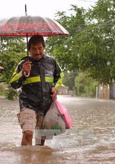Bão Max đổ bộ vào Mexico gây mưa lớn