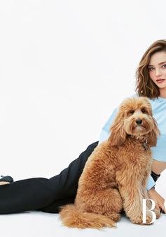 Miranda Kerr mang cả thú cưng đi chụp mẫu