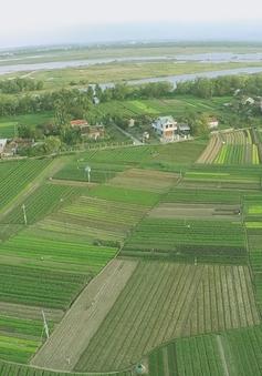 Nông dân làm du lịch - Mô hình hấp dẫn nhiều du khách