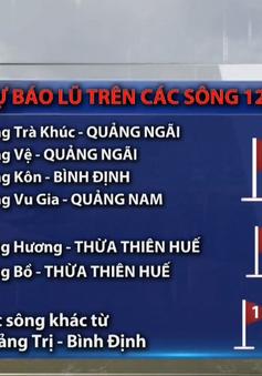Mưa lớn tiếp diễn từ Hà Tĩnh đến Quảng Ngãi, cảnh báo ngập lụt nghiêm trọng