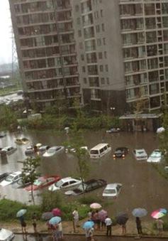 Trung Quốc hứng chịu mưa bão lớn
