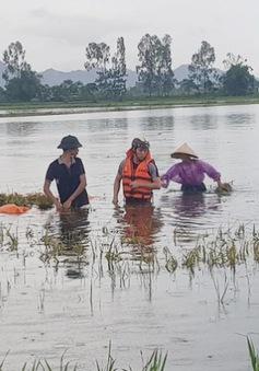 Ngân hàng hỗ trợ người dân bị thiệt hại do lũ lụt