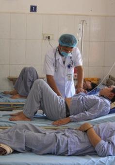 12 người bị ngộ độc nấm tại Sơn La