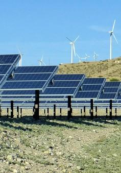 IEA: Năng lượng tái tạo sẽ phát triển vượt bậc